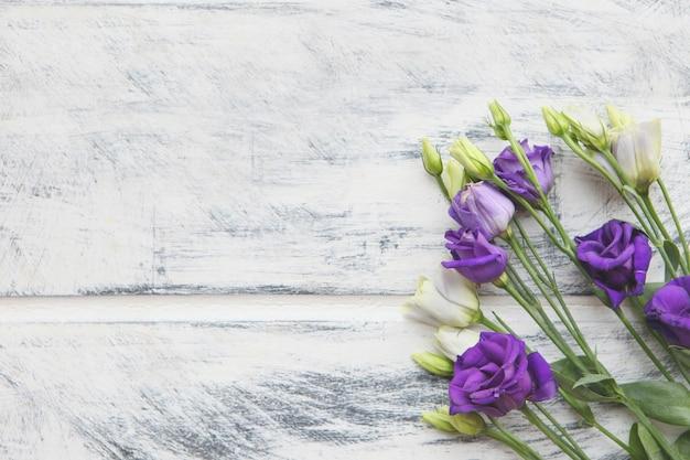 Flor de eustoma violeta e branca em fundo de madeira pintado de branco. copie o espaço para o texto. projeto de plano de fundo de flores. fundo botânico bonito de flores cortadas lisianthus ou genciana da pradaria.