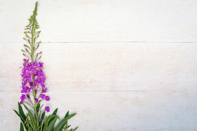 Flor de ivan-chá em fundo branco de madeira, copie o espaço.