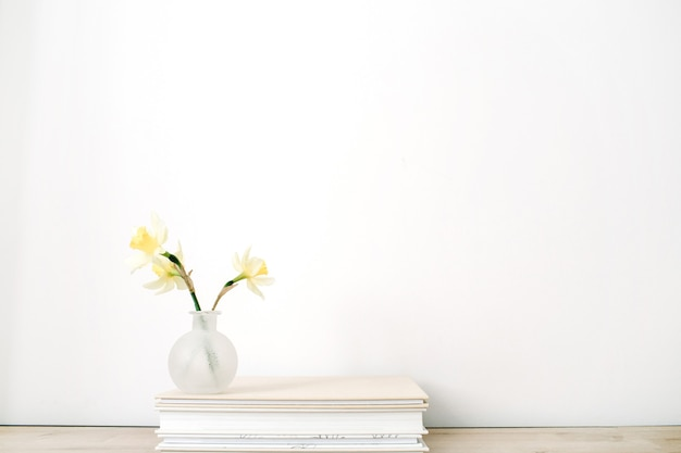 Flor de narciso amarelo em vaso de álbuns de fotos na frente do branco.
