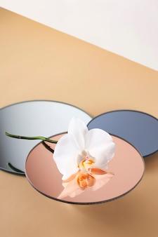 Flor de orquídea branca no pódio do espelho