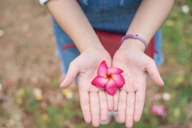 Flor de outono nas mãos da garota