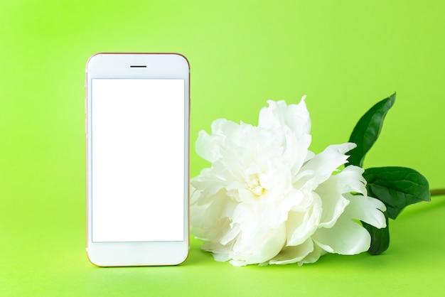Flor de peônia branca em flor e celular com tela branca