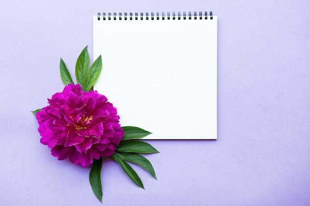 Flor de peônia rosa e folha em branco para anotações. vista superior, maquete