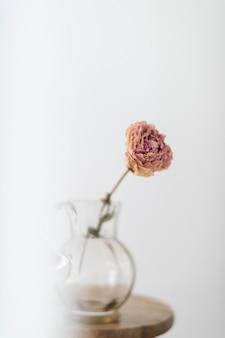 Flor de peônia seca em uma jarra de vidro em um banquinho de madeira em uma sala branca