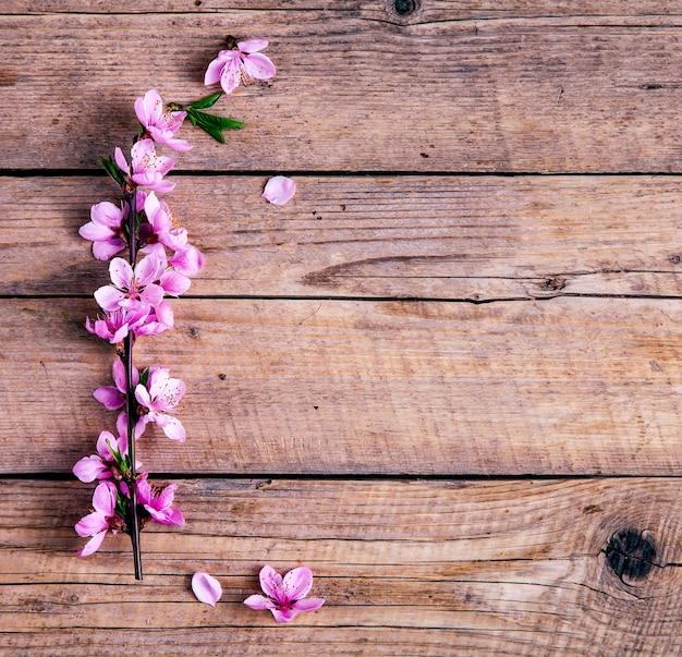 Flor de pêssego em fundo de madeira velho. flores de frutas e