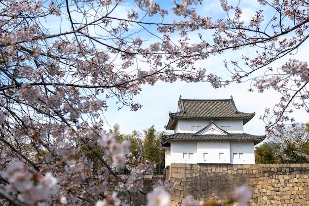 Flor de pessegueiro japonês