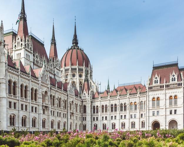 Flor de primavera com vista do parlamento hungria, budapeste