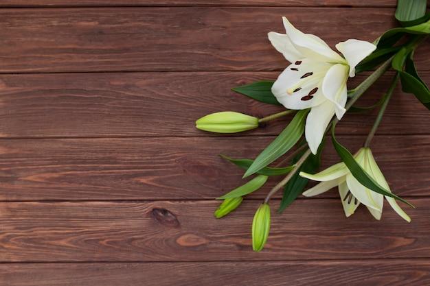 Flor de primavera em fundo de madeira
