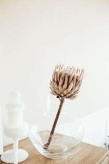 Flor de protea exótica tropical em vaso de vidro na mesa de madeira