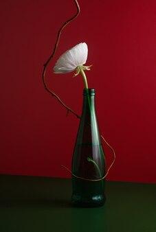 Flor de ranúnculo branco em garrafa verde com galho de salgueiro encaracolado