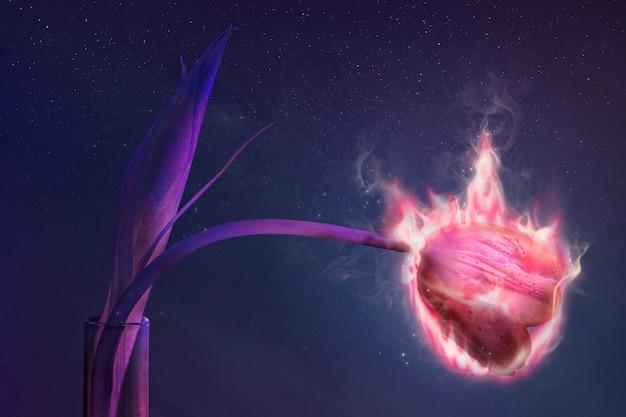 Flor de tulipa flamejante, estética de fogo, remix de ambiente com efeito de fogo