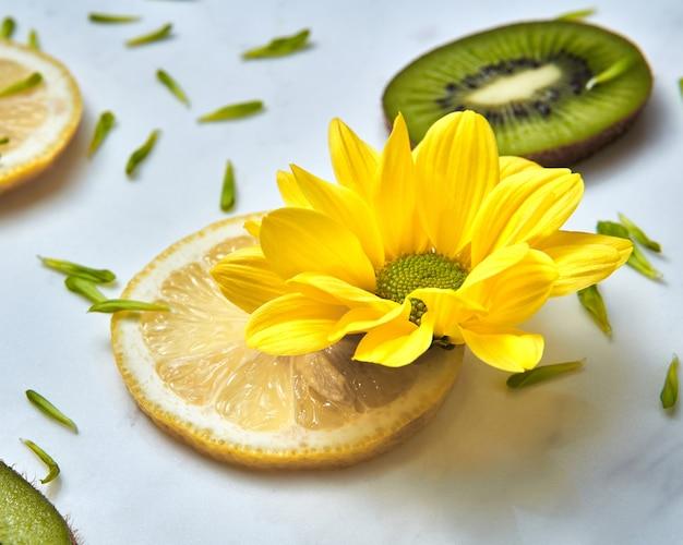 Flor de verão amarelo de close-up, fatias de kiwi, limão e pétalas de flores verdes.