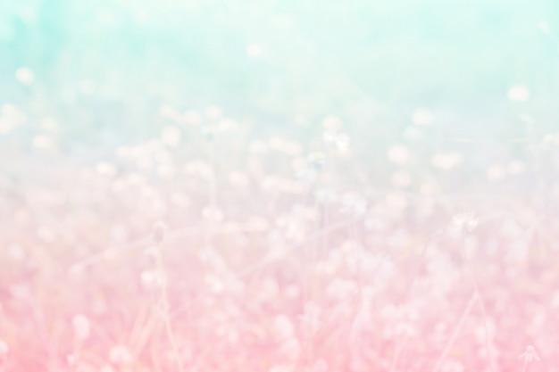 Flor doce e cor pastel