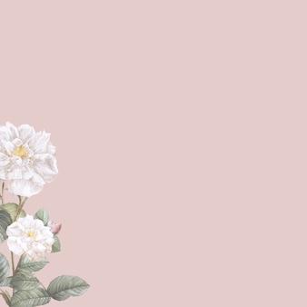 Flor elegante em branco sobre fundo pastel