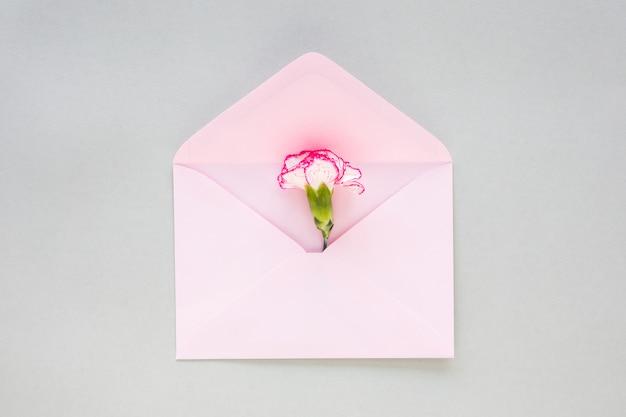 Flor em botão no envelope na mesa