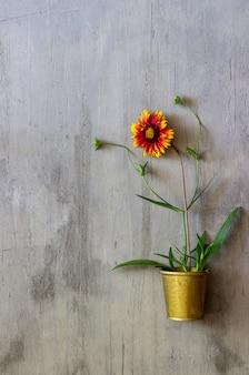 Flor em um concreto. conceito mínimo. criativo.