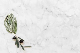 Flor feita com azeitona e folhas no pano de fundo de mármore branco
