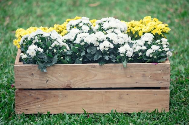 Flor, floral