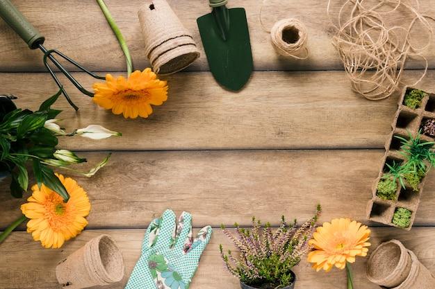 Flor fresca; plantas; bandeja de turfa; pote de turfa e equipamentos de jardinagem dispostas na mesa de madeira marrom