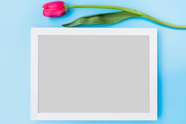 Flor fresca rosa perto de quadro