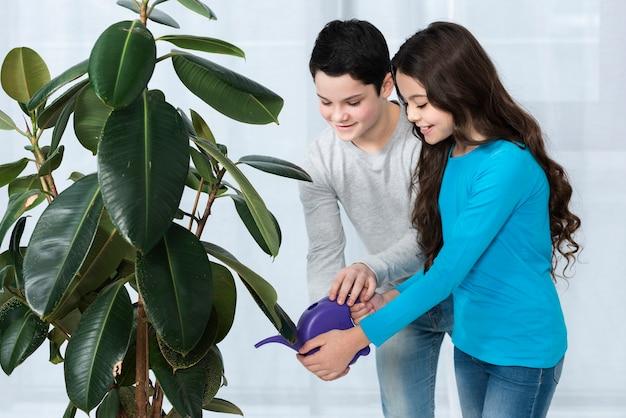 Flor molhando das crianças
