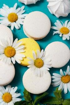 Flor, páscoa, primavera, flores, natureza, branco, colorido, decoração, azul, bela, flor,