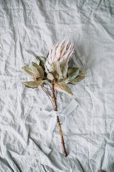 Flor prótea em manta de linho cinza