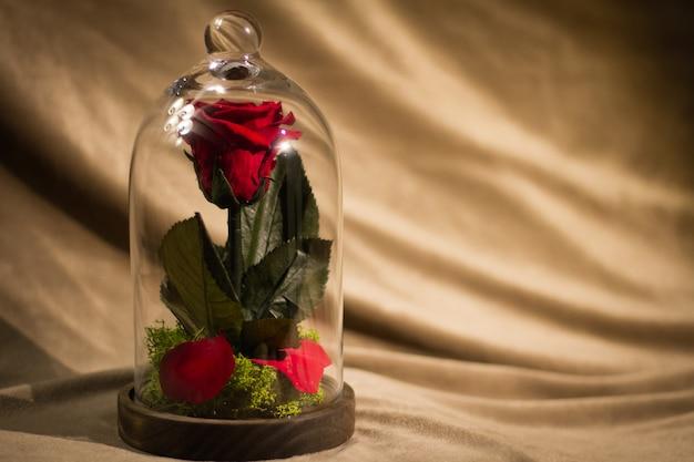 Flor rosa decorada em taça de vidro