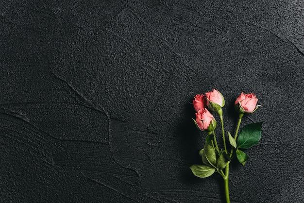 Flor rosa em um fundo de cimento escuro