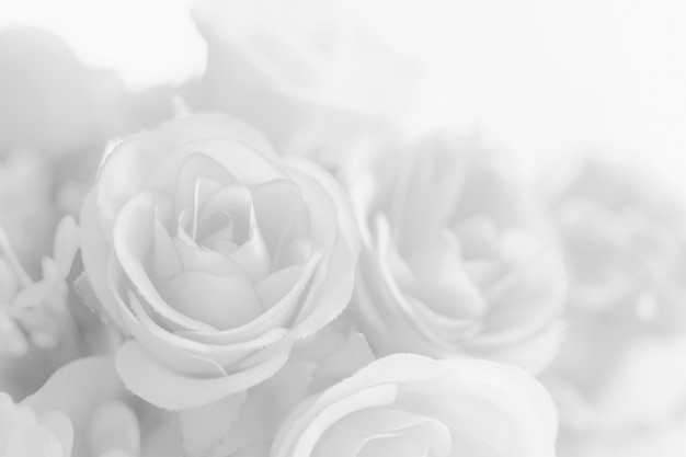 Flor rosa linda abstrata de tom branco
