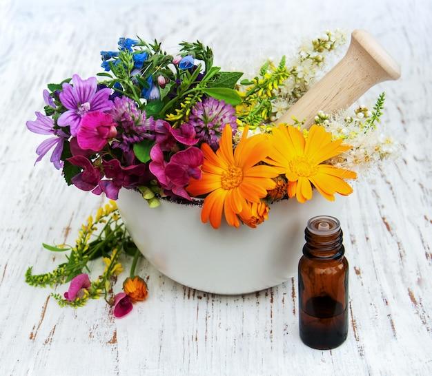Flor selvagem e folha de erva em argamassa