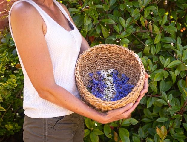 Flor selvagem na cesta para naturopatia e botânica