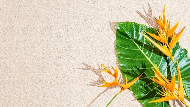 Flor tropical laranja exótica e folha verde grande em fundo de areia