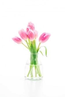 Flor tulipa rosa em um vaso no fundo branco