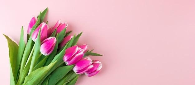 Flor tulipa rosa sobre fundo de madeira mesa azul com espaço de cópia de texto.