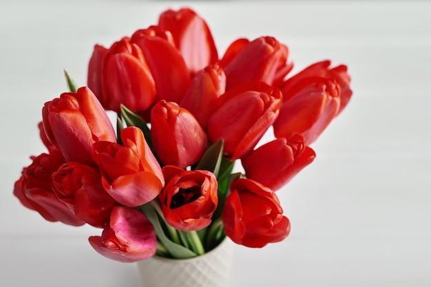 Flor tulipa vermelha isolada na parede branca