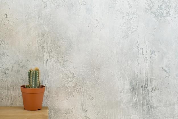 Flora e estilo loft. cactus na cômoda.