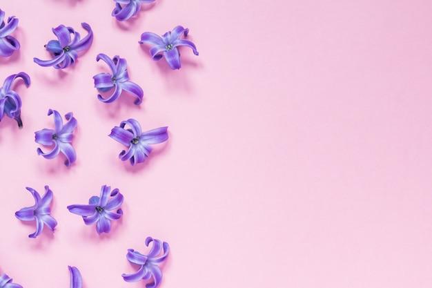Floral lindo fundo rosa pastel. roxas pequenas flores de jacinto. vista plana, vista superior, cópia espaço