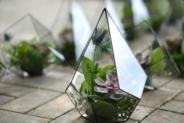 Florarium com flores frescas e suculentas