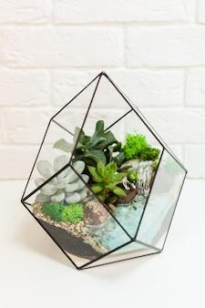 Florarium - composição de suculentas, pedra, areia e vidro, elemento de interior, decoração da casa, terário de vidro