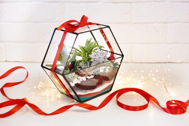 Florarium - composição de suculentas, pedra, areia e vidro, elemento do interior, decoração, deror de natal, presente de ano novo
