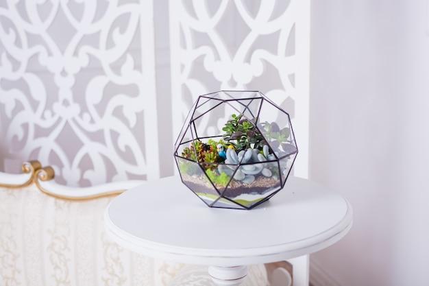 Florarium composição de suculentas, pedra, areia e vidro, elemento do interior, decoração, terarium de vidro