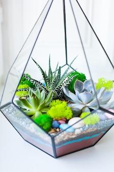 Florarium - composição de suculentas, pedra, areia e vidro