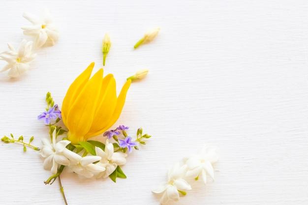 Flores amarelas arranjo de ylang ylang plano leigo estilo cartão-postal