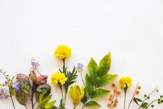 Flores amarelas com arranjo de folhas estilo cartão postal plano