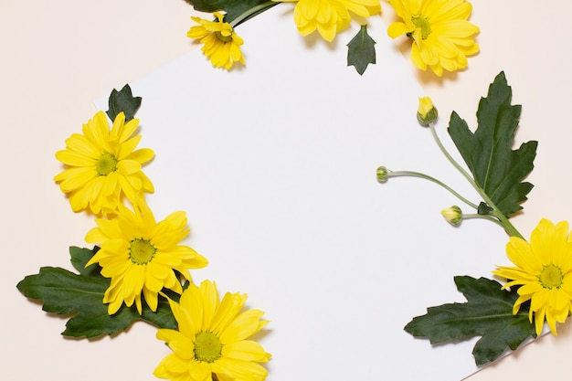 Flores amarelas com botões fechados e folhas verdes estão em um fundo bege em comparação com um quadrado branco vazio. maquete em branco floral. conceito, modelo para as férias da primavera