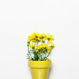 Flores amarelas em pote amarelo na superfície branca