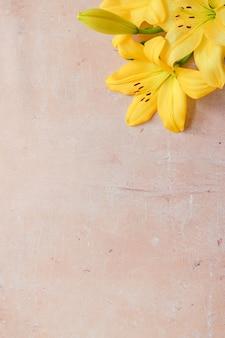 Flores amarelas em um fundo cinza de concreto