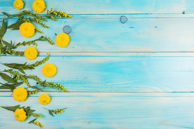 Flores amarelas frescas e folhas verdes