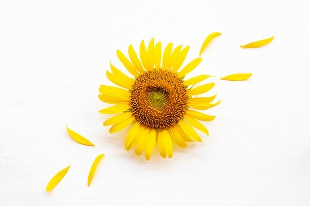 Flores amarelas girassóis arranjo estilo cartão postal